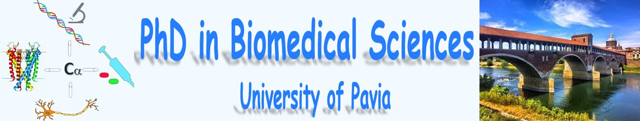 PhD in Biomedical Sciences – University of Pavia